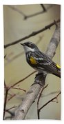 Yellow Rumped Warbler Bath Towel
