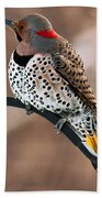 Yellow-shafted Northern Flicker Bath Towel
