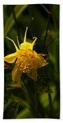 Yellow Splendor Bath Towel