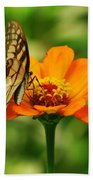 Yellow Swallowtail Bath Towel