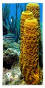 Yellow Tube Sponge Bath Towel