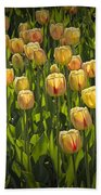Yellow Tulip Flowers On Windmill Island In Holland Michigan Bath Towel