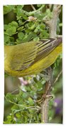 Yellow Warbler Hen Bath Towel