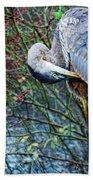 Young Blue Heron Preening Bath Towel