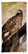 Young Eagle Pose II Hand Towel