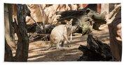 Young Kangaroo Bath Towel