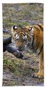 Young Tiger Bath Towel