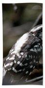 Young Woodpecker Bath Towel