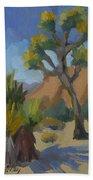 Yucca And Joshua Bath Towel