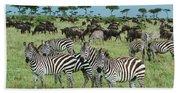 Zebra And Wildebeest Grazing Masai Mara Bath Towel