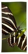 Zebra Longwing 3 Bath Towel