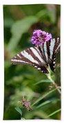 Zebra Swallowtail Butterfly In Garden Bath Towel