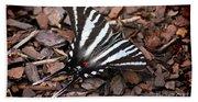 Zebra Swallowtail Butterfly Bath Towel