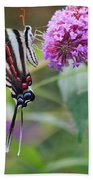 Zebra Swallowtail Butterfly On Butterfly Bush  Bath Towel