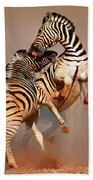 Zebras Fighting Bath Towel