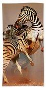 Zebras Fighting Bath Towel