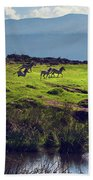Zebras On Green Grassy Hill. Ngorongoro. Tanzania Bath Towel