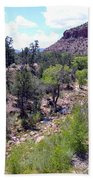 Zion National Park 1 Bath Towel