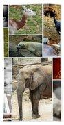 Zoo Collage Bath Towel