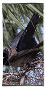 Boat-tailed Grackle - Quiscalus Major Bath Towel