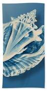 X-ray Of A Conch Shell Bath Towel