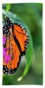 001 Making Things New Via The Butterfly Series Bath Towel