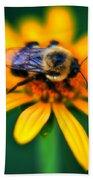 006 Sleeping Bee Series Bath Towel