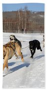 2010 Limited North American Sled Dog Race Bath Towel