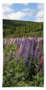 A Field Of Lupins Bath Towel