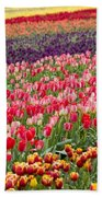 A Tulip Field Bath Towel