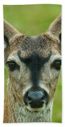 All Ears Bath Towel