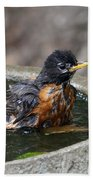 Bird Bath Fun Time Bath Towel