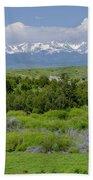 Bridger Mountain View Bath Towel