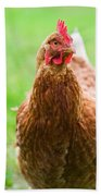 Brown Hen On A Lawn Bath Towel