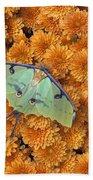 Butterfly On Flowers Bath Towel
