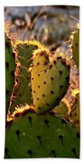 Cactus Heart In Sunset Bath Towel