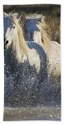 Camargue Horse Equus Caballus Group Bath Towel