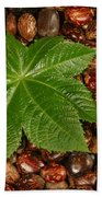 Castor Bean Leaf And Seeds Bath Towel