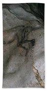 Cave Art: Sorcerer Bath Towel