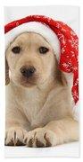 Christmas Puppy Bath Towel