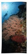 Diver Over Soft Coral Seascape Bath Towel