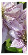 Double Clematis Named Empress Bath Towel