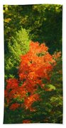 Fall Colors Bath Towel
