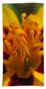 French Marigold Named Starfire Bath Towel