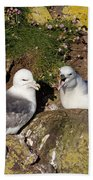Fulmar Pair Bonding Bath Towel
