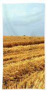 Golden Harvest Field 1 Bath Towel