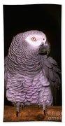 Gray Parrot Bath Towel