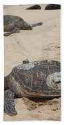 Green Sea Turtles With Gps Bath Towel
