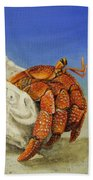 Hermit Crab Bath Towel