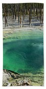 Hot Springs Yellowstone National Park Bath Towel